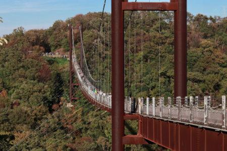 大阪民の森・ほしだ園地吊り橋施設「星のブランコ」
